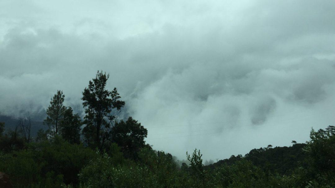 Montserra pluie (6)