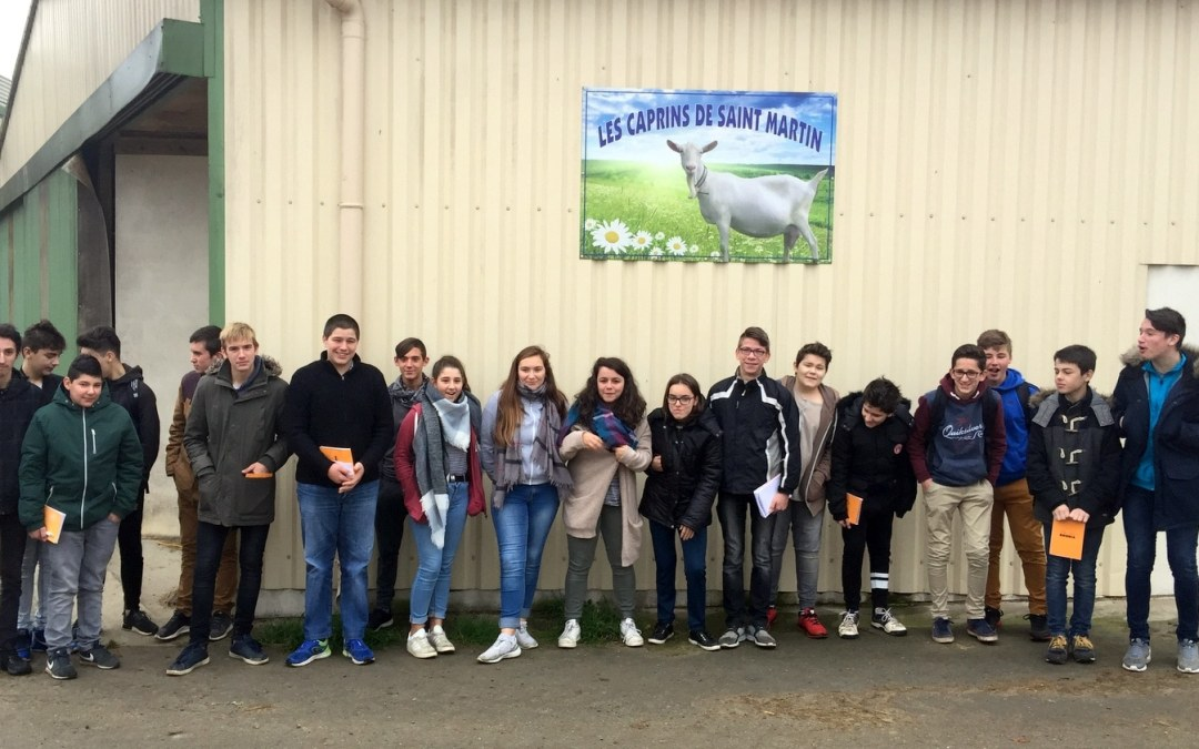 visite élevage chèvres