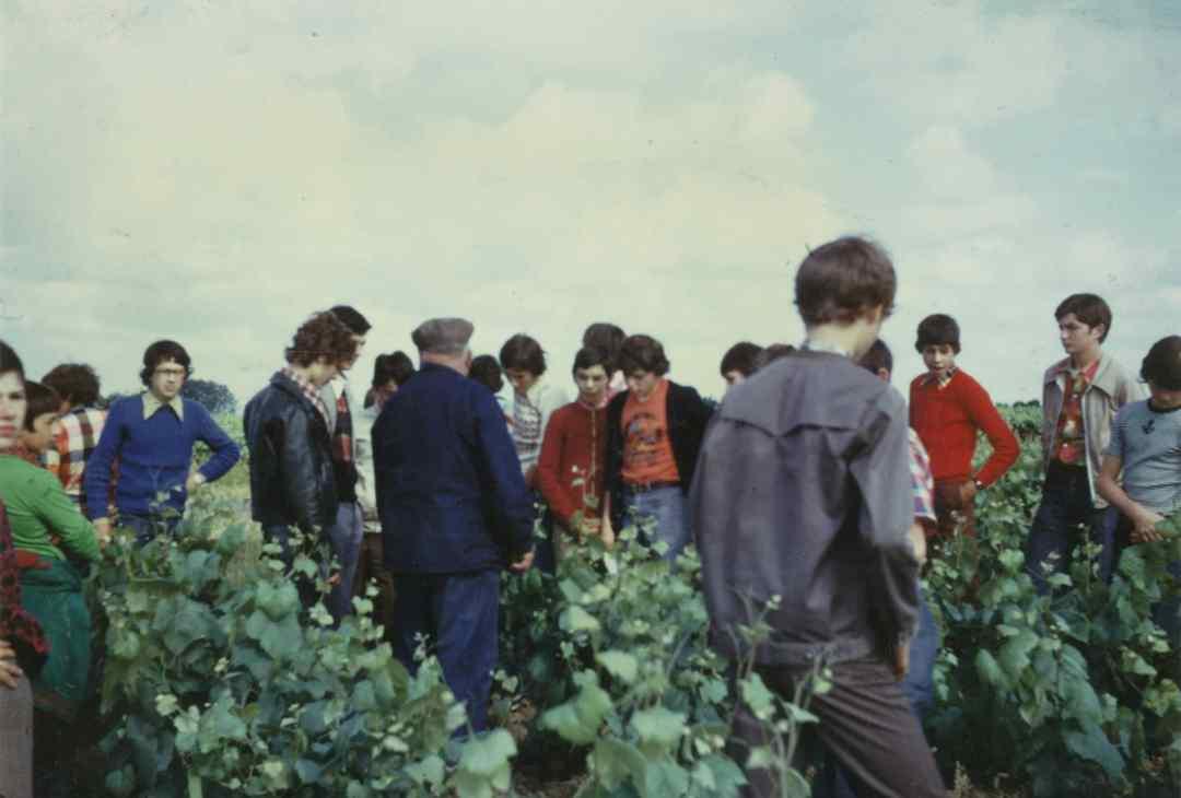 Archives anciens élèves mfr puy-sec 1973 0