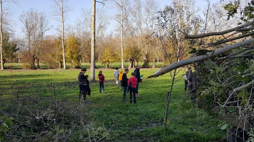 Écurie du Marais Parc du Marais Poitevin novembre 2018 Maraîchins