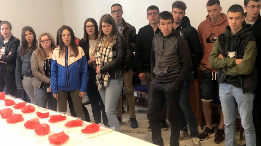 Oviedo visites Villes Laiterie et Cidrerie MFR 2019