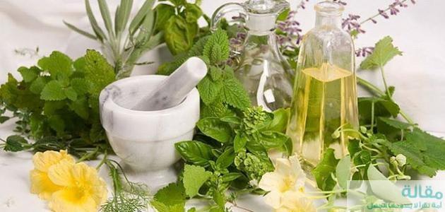 أفضل علاج تأخر الحمل بالأعشاب