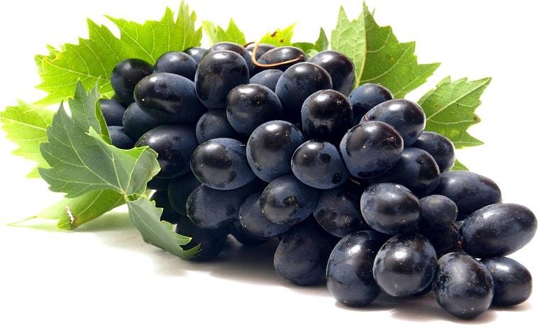 فوائد العنب الأسود