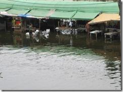 2011_10_20 Flooded Market (9)