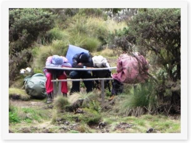 2011_12_29 Kilimanjaro (3)