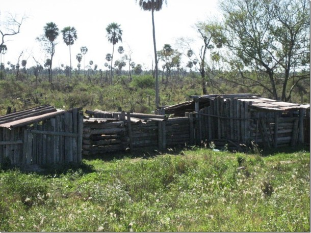 2009_06_20 Paraguay Indigenous (46)