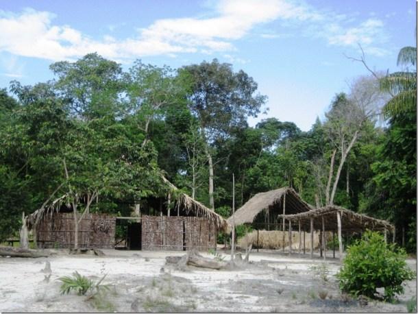 2008_07_17 Brazil Amazon Indigenous (1)