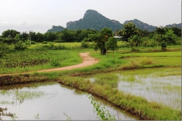 2012_09_15 Thailand Hua Hin Countryside (1)