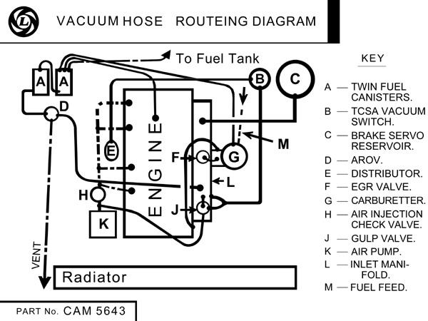 1977 to 1980 Vacuum Hose Routeing Diagram : MGB & GT Forum