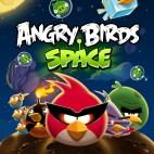 PC: Angry Birds Space (käytetty)