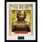 GBeye Collector Print - Harry Potter Sirius Azkaban 30x40cm