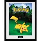 GBeye Collector Print - Pokemon Catch
