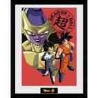 GBeye Collector Print - Dragon Ball Super Resurrection Group 30x40cm