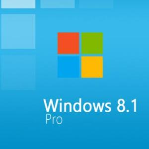 PC: Windows 8.1 Professional OEM (latauskoodi)