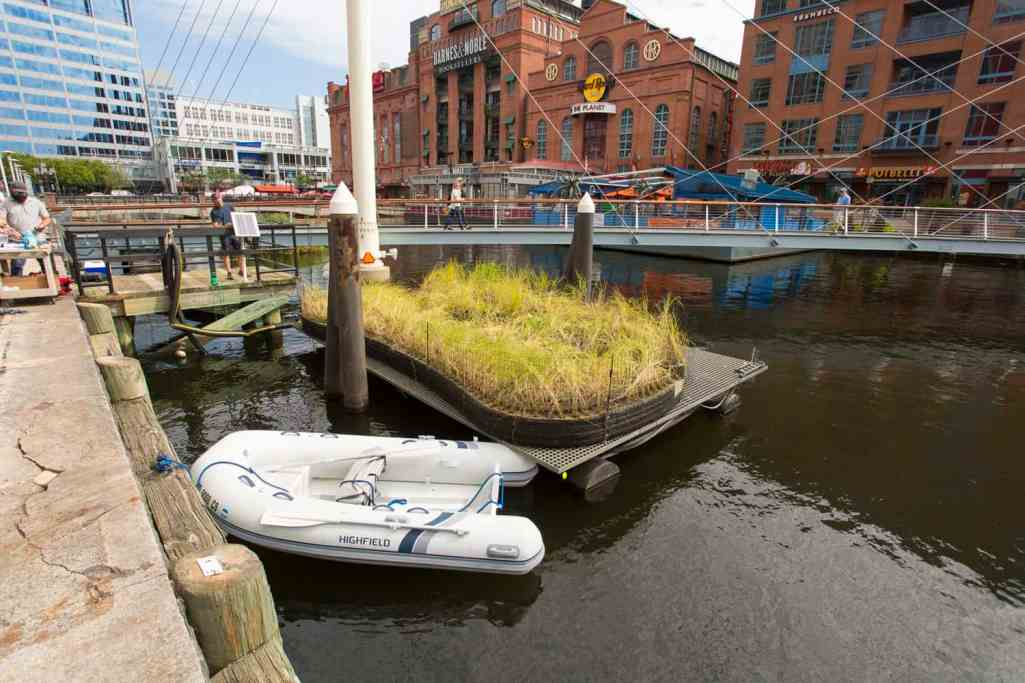 Improving Baltimore Harbor's Water Quality with Nature-Based Solutions