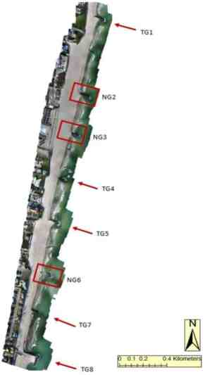 Figure: Identification of Traditional and Notched Groins at Deal beach