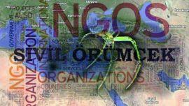 NGO (Non Govermental Organizaton) Nedir? - 1