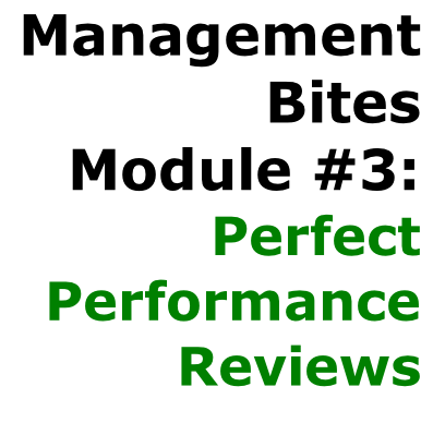 Perfect Performance Reviews