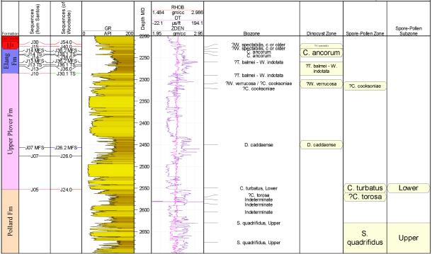 MGPalaeo Timor-Leste well data