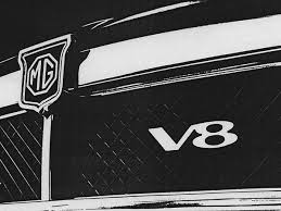 V8 special parts / conversion