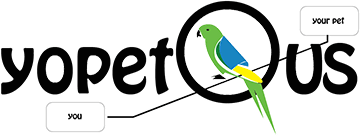 #VUC540: Tim Panton Presents YoPet – A WebRTC Application