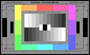 DSC Labs Chip Chart 300px