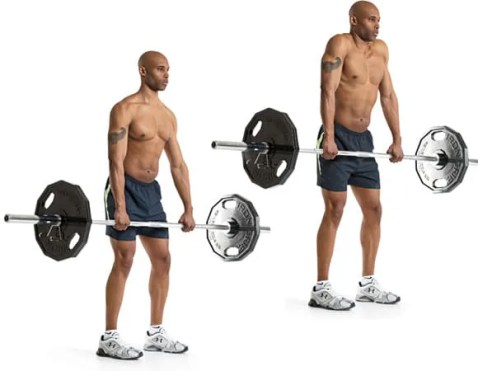 8 TRAP WORKOUTS FOR MEN AT THE GYM FOR BODYBUILDING