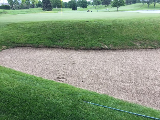 Not Raking Bunker