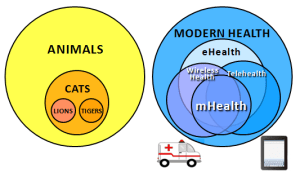 Syllogism examples in healthcare