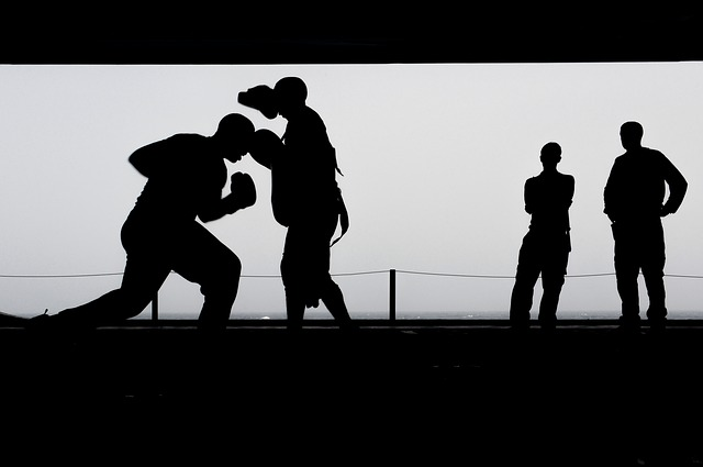 boxing-606193_640
