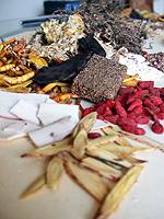 Chinese Herbs Miami, FL
