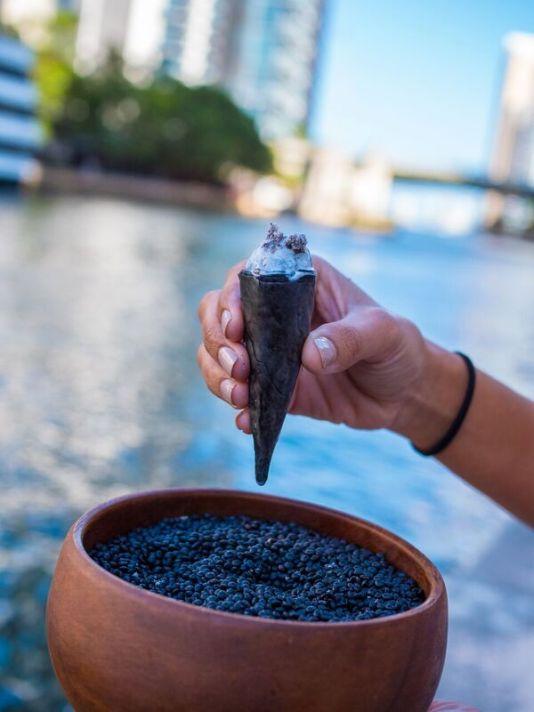 elcielo Miami, elcielo, Colombian restaurants Miami, MiamiCurated