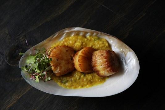 best indian restaurant in miami, maska miami, best indian food miami, MiamiCurated