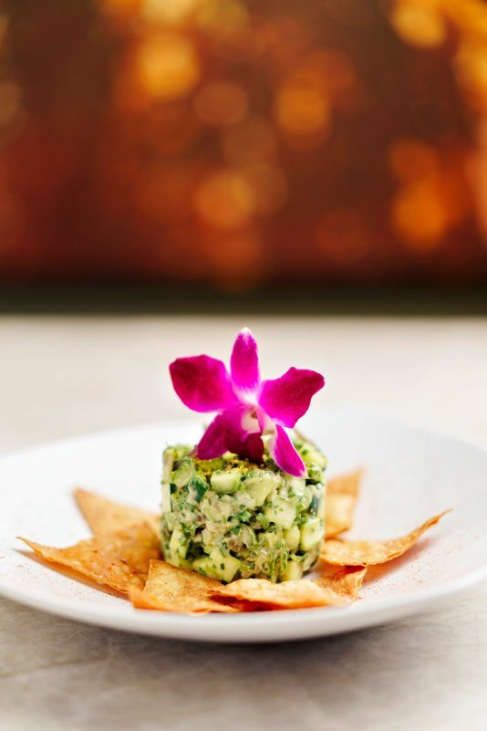 best restaurants in coral gables, miamicurated