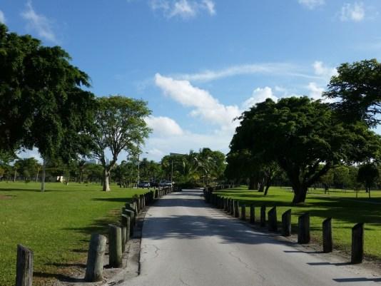 Miami Walks, MiamiCurated