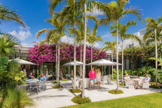 things to do in Palm Beach, MiamiCurated