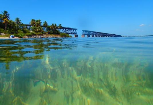 what's new to do in the florida keys, Miamicurated
