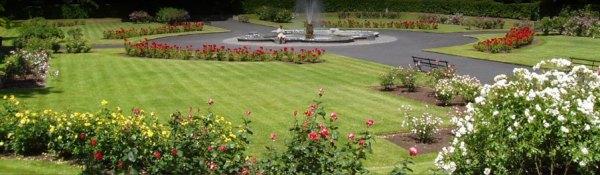 miami landscaping - design lawn