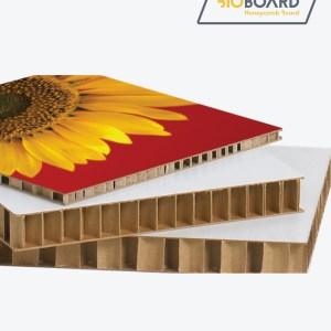 BioBoard Honeycomb X Board
