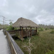 Kirby Storter Boardwalk