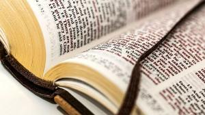 La Biblia Condicionalista