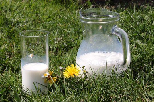 Milcheiweißallergie