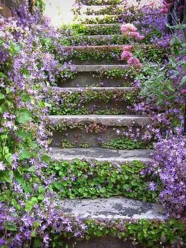 Lavender Stairs, British Columbia, Canada