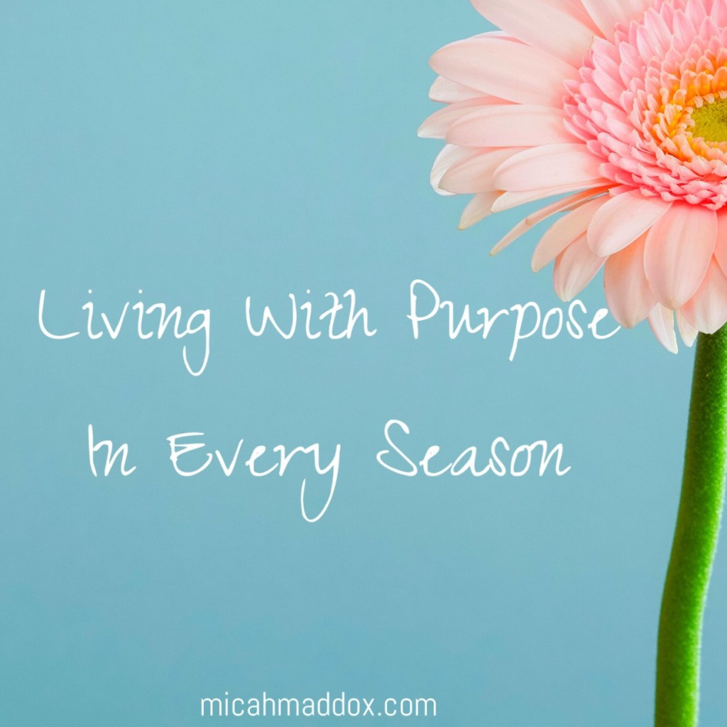 "Living With Purpose ""When my strength is gone and hard seasons come, I'm learning to remember my past blessings. When I praise God again for blessings from the past, I'm compelled to praise Him in the present."""