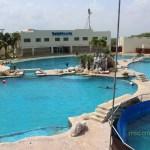 dolphinaris ventura park cancun