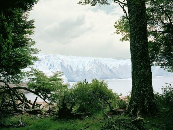 Glacier Argentina Landscape