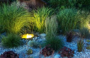 How to Add Landscape Lighting to Your Yard