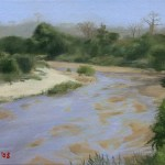 Turgwe River in Zimbabwe, Africa, 2008, oil on canvas board, 8x6in(20x15cm)