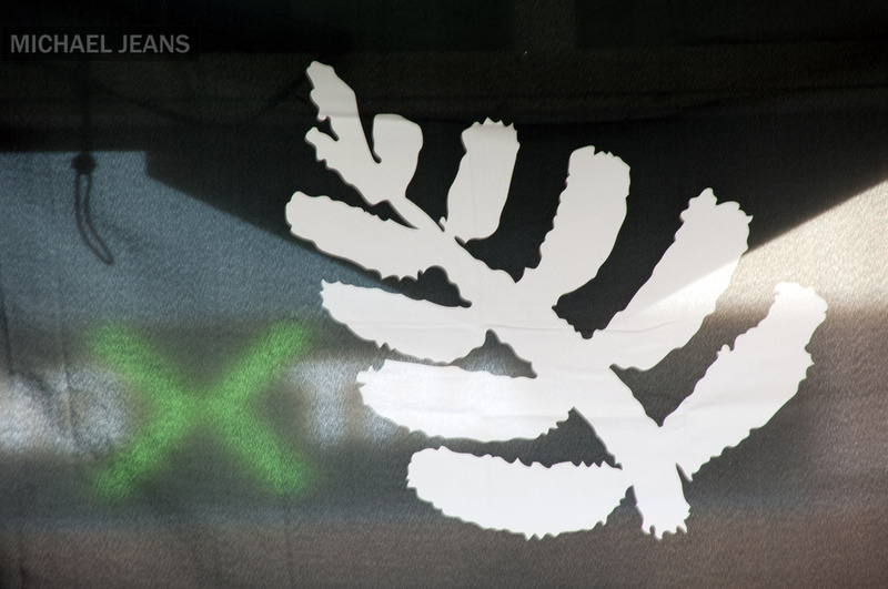 Silver fern flag Duke Street Cambridge New Zealand