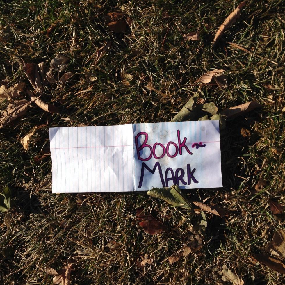 Book Mark in Grass 3